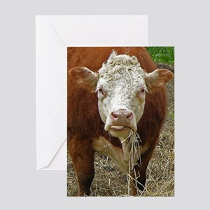 Miniature Hereford Greeting Card