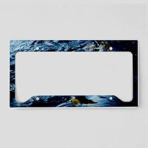 Water Blur License Plate Holder