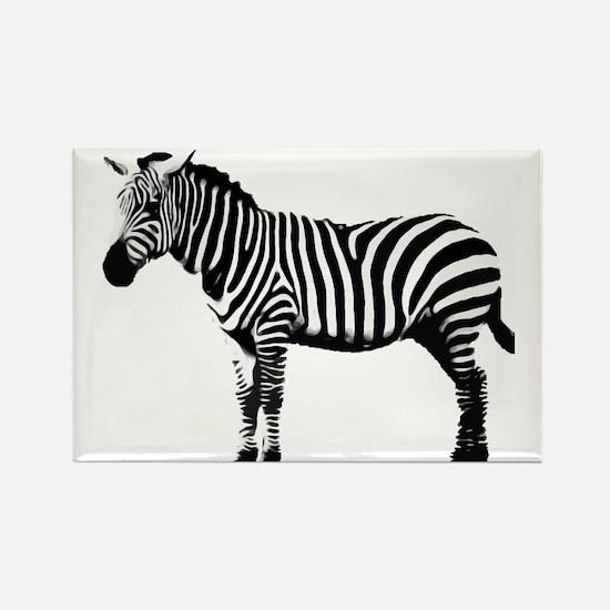 Zebra Rectangle Magnet
