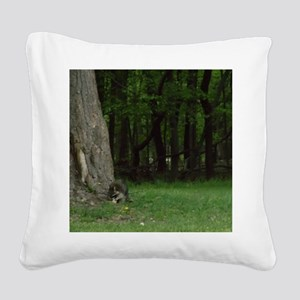 Foraging Raccoon Square Canvas Pillow