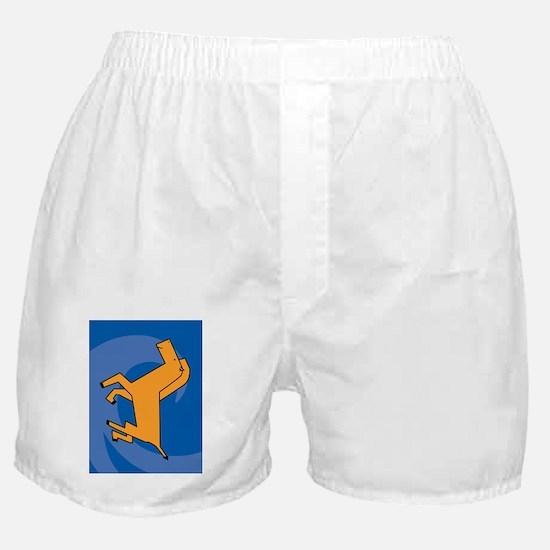 HorseKP Boxer Shorts