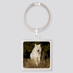 white wolf 10by Square Keychain