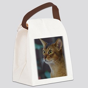 Abyssinian AA025D-018 Canvas Lunch Bag