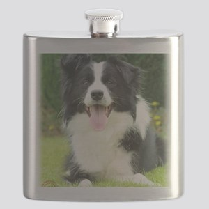 Border Collie 9A014D-14 Flask