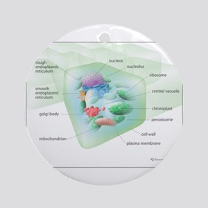 Plant Cell Ornament (Round)