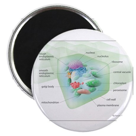 """Plant Cell 2.25"""" Magnet (100 pack)"""