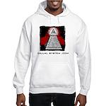 Dajjal System .com Hooded Sweatshirt