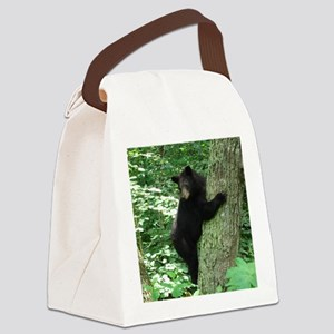 BearTree Canvas Lunch Bag
