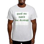 What Nourishes Me Destroys Me Ash Grey T-Shirt