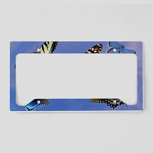Butterfly Assortment Laptop S License Plate Holder