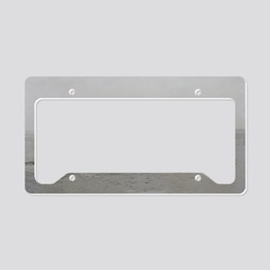 first flight 14x10 License Plate Holder