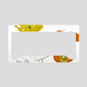 checkers poppies1 License Plate Holder