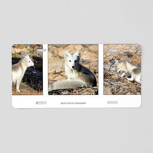 arcticfox Aluminum License Plate