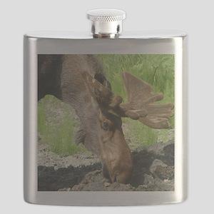Bull Moose #1 Flask