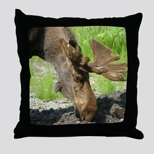 Bull Moose #1 Throw Pillow