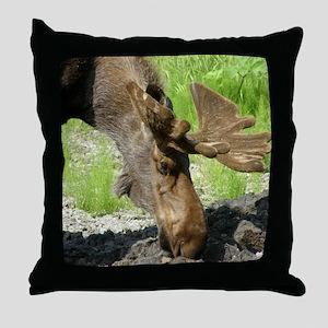 Bull Moose #1 Throw Pillow