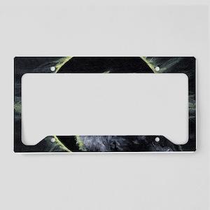 Portent License Plate Holder