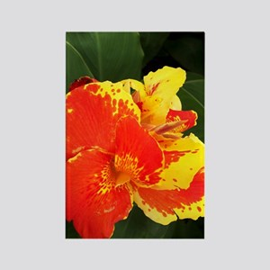 Costa_Rica_flower_iTouch Rectangle Magnet
