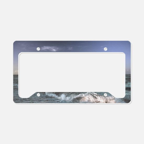 Dolphins In The Surf License Plate Holder