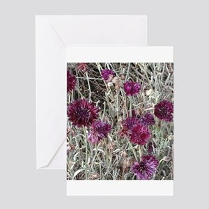 Purple flowers Greeting Cards