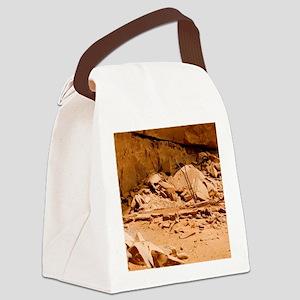 Kiva in Lower Grand Gulch Canvas Lunch Bag