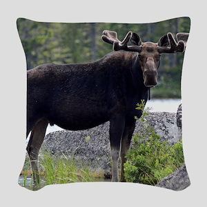 11x11_pillow 5 Woven Throw Pillow
