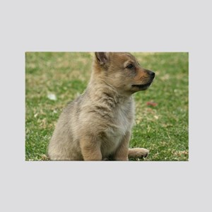 Swedish Vallhund Pup 9Y165D-131 Rectangle Magnet