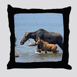 16x20_print 2 Throw Pillow