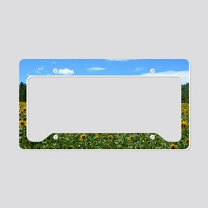 france10 License Plate Holder