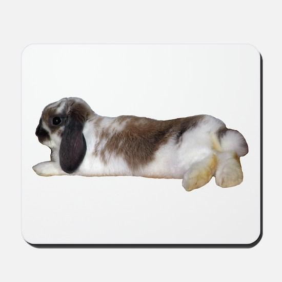 """Bunny 3"" Mousepad"