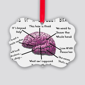 Atlas of a Stylist Brain Picture Ornament