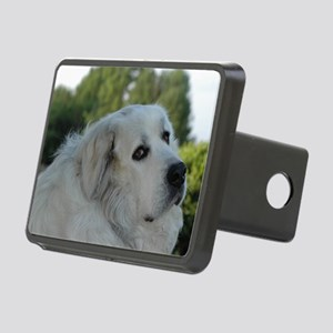 Great Pyr Rectangular Hitch Cover