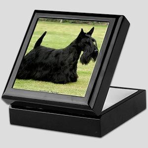 Scottish Terrier 9Y041D-035 Keepsake Box