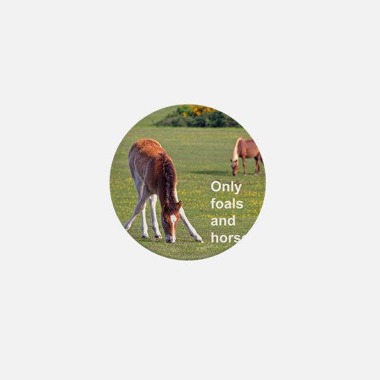 Only foals and horses Mini Button