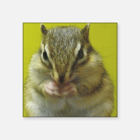 "chipmunk squ Square Sticker 3"" x 3"""