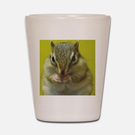 chipmunk squ Shot Glass