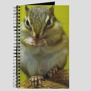 chipmunk ipad Journal