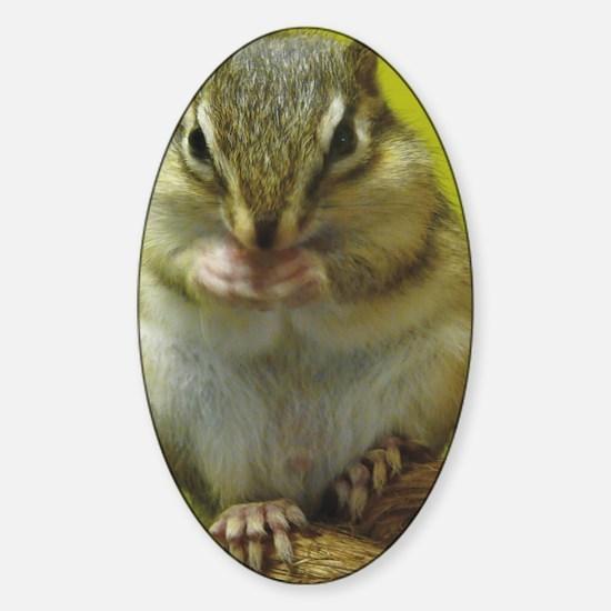 chipmunk ipad Sticker (Oval)