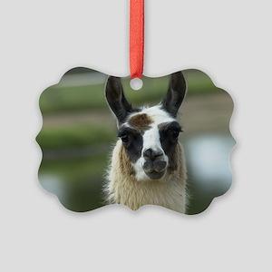 llama_laptop Picture Ornament