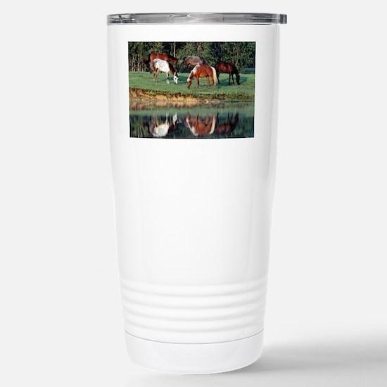 reflection_laptop Stainless Steel Travel Mug