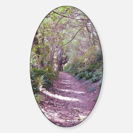 woodwalk large Sticker (Oval)