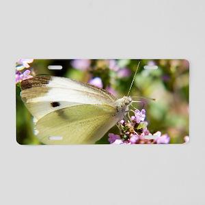 butterfly-butterfly-bush Aluminum License Plate