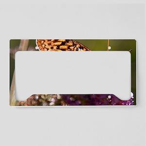 skipper-on-butterfly-bush License Plate Holder
