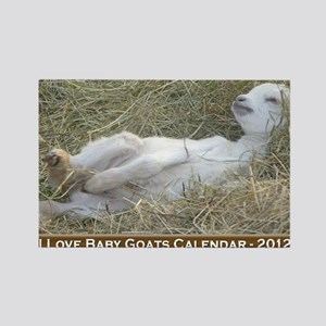 2012 I Love Baby Goats Calendar Rectangle Magnet