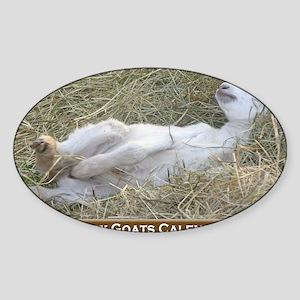 2012 I Love Baby Goats Calendar Sticker (Oval)