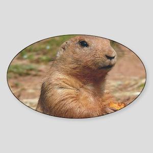 prairie dog larg Sticker (Oval)