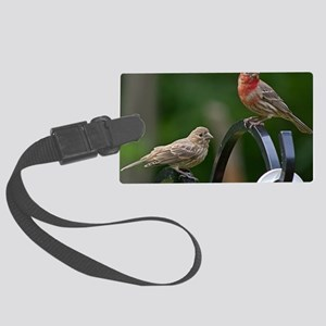 House Finches Large Luggage Tag