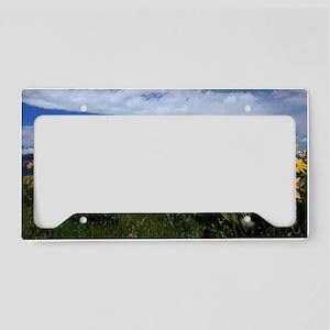 IMG_5794 License Plate Holder