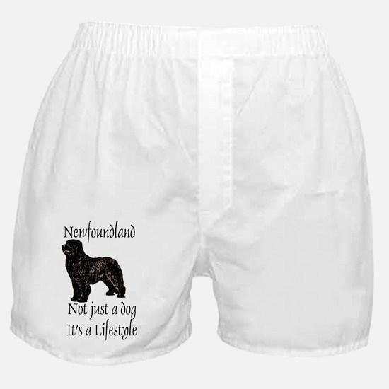 Newfoundland Dog Its A Lifestyle Boxer Shorts