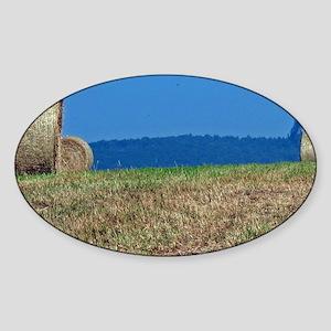 hay-card Sticker (Oval)